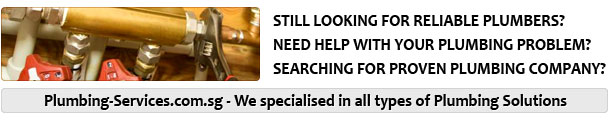Looking for reliable plumbing services? Toilet or kitchen leaking problem troubling you? Searching for 24 hours emergency plumber?